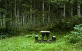 Preview wallpaper Park, trees, green, table, chair