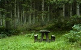 Parque, árvores, verde, mesa, cadeira