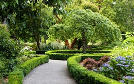 Preview wallpaper Park, trees, path, plants, green