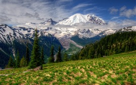 Preview wallpaper Rainier, Washington, mountains, trees, snow, clouds, nature landscape