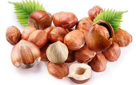 Some chestnut, nuts, white background