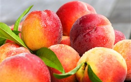 Preview wallpaper Some fresh peaches, water droplets