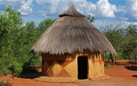 Preview wallpaper Africa, hut, trees, hot
