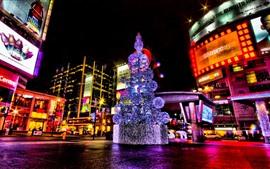 壁紙のプレビュー ディズニーランド、クリスマスツリー、ライト、夜