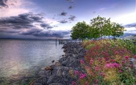 Flores, pedras, cais, lago, árvores