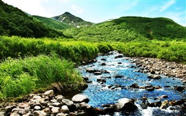 Preview wallpaper Mountain, green, bushes, grass, creek, rocks, summer