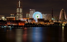 Night, city, river, ferris wheel, buildings, lights, Japan
