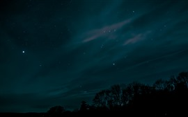 Preview wallpaper Starry, sky, night, trees, silhouette