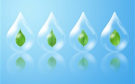 Preview wallpaper Water droplets, green leaf, creative design