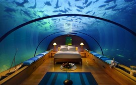 Preview wallpaper Bedroom, underwater, fish, glass