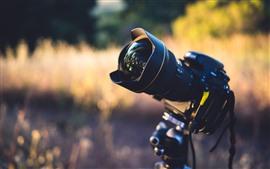 Камера, объектив, природа