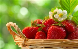 Preview wallpaper Delicious fruit, strawberries, basket, green background