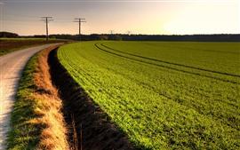Vorschau des Hintergrundbilder Grüne Felder, Stromleitungen, Straße, Gras
