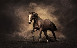Preview wallpaper Horse, dust, creative
