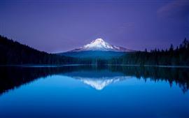 Mountain, snow, lake, water reflection, trees, beautiful nature landscape