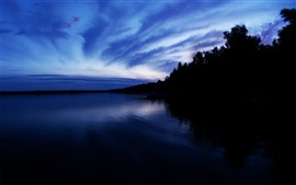 Night, lake, trees, calm, silhouette