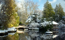 Park, snow, bridge, hut, lake, trees, winter