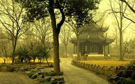 公園、木、朝、霧、望楼、中国