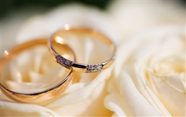 Preview wallpaper Two rings, rose, diamond