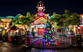 Disneyland, trees, lights, night