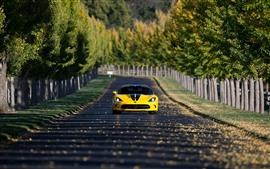Preview wallpaper Dodge SRT Viper yellow car front view, road, trees