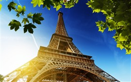 Preview wallpaper Eiffel Tower, green maple leaves, sun rays, France