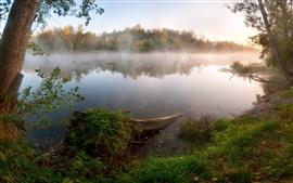 Озеро, туман, деревья, осень, утро
