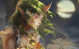 Preview wallpaper League of Legends, Soraka, beautiful girl