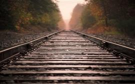 Aperçu fond d'écran Chemin de fer, piste, rochers, brumeux