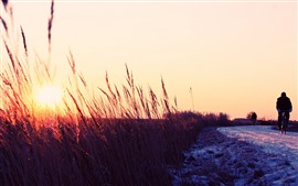 Preview wallpaper Winter, snow, road, reeds, sunrise