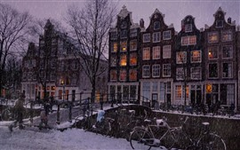 Preview wallpaper Amsterdam, city, houses, snow, bridge, winter