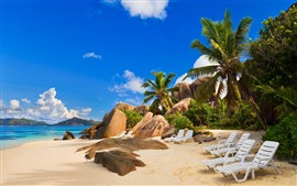 Beach, stones, tropical, palm trees, sea, chairs