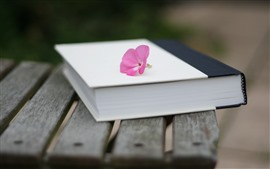 Preview wallpaper Book, pink flower, still life, hazy