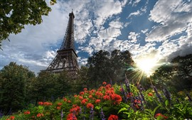 Preview wallpaper Eiffel Tower, flowers, sun rays