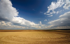 Field, lines, blue sky, white clouds