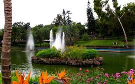 Fountain, park, trees, green, pond