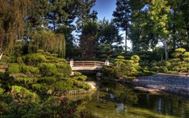 Parc, pont, étang, arbres