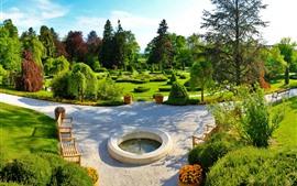 Парк, зелень, деревья, солнце