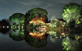 Parque, noite, árvores, luzes, barco, lago