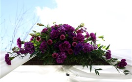 Purple carnations, flowers, sky