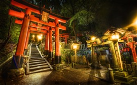 Preview wallpaper Torii gate, shrine, Japan, lights, night
