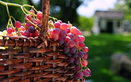 Preview wallpaper Fresh red grapes, basket, fruit