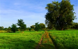 Preview wallpaper Green field, trees, path, nature scenery