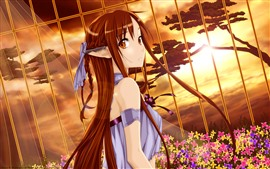 Long hair anime girl, fence, sunshine, flowers