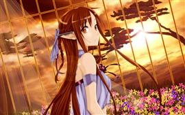 预览壁纸 长发动漫女孩,篱笆,阳光,花朵