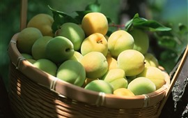 Preview wallpaper One basket of green peaches