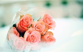 Preview wallpaper Pink roses, bouquet, hazy