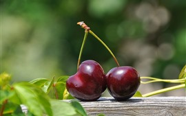 Two red cherries, green leaves
