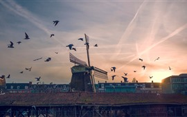 Preview wallpaper Windmill, birds, sunset, city