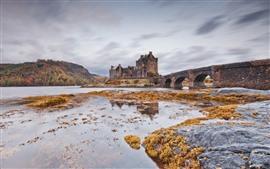 Puente, castillo, río, Escocia